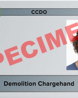 demolition chargehand card